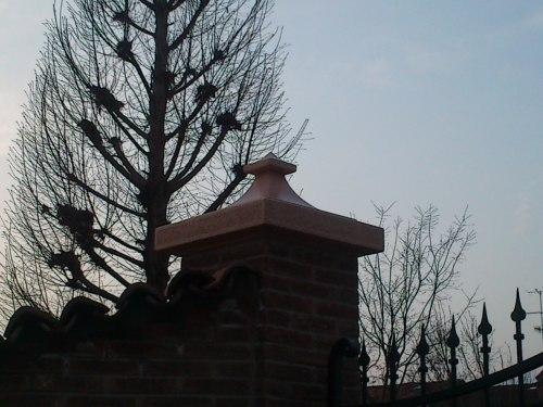 cappello pilastro
